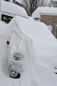 bartering, snowpocalypse