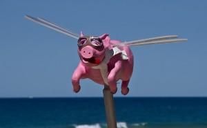 deadline change, deadline changes, pigs fly